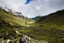 Path through the valley in the Cuzco Region of Peru. by Tom Hanslien