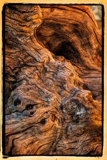 Holz von Uwe Karmrodt