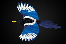 Geometrical Thievish Magpie von Hunor Demeter