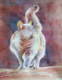 Katze von Marie-Ange Lysens