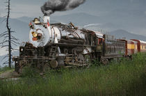 Smokey Mountain Railway Steam Locomotive by Randall Nyhof