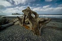 Driftwood on Rialto Beach von Randall Nyhof