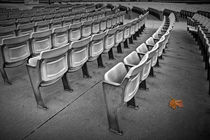 Arena Chair Seatings with Oak Leaf by Randall Nyhof