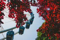 Ferris Wheel von Patrycja Polechonska