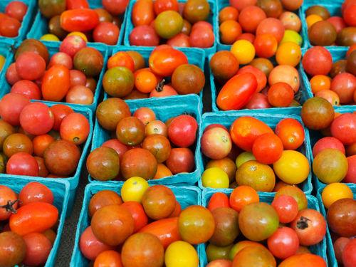 Tomatoes0046