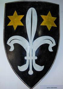 Shield from Romania von Florentina Necunoscutu de Carvalho