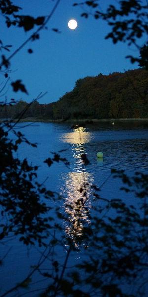 Mondlichtspiegelfjordroskilde