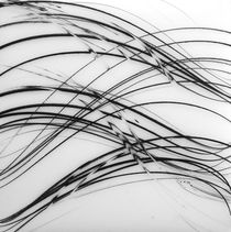 Winter Lines 3 von Jaanika Peerna