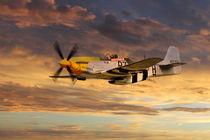 P-51 Ferocious Frankie von James Biggadike