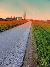Landstraße mit sanft erröteten Wangen | Landschaftsfotografie by Patrick Jobst