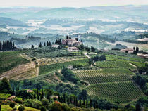 San Gimignano View by Colin Metcalf
