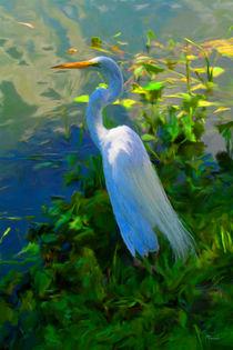 Egret In Blue von Mike Darrah