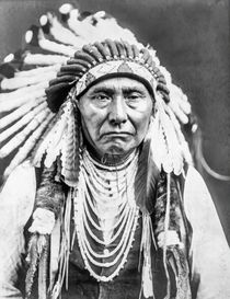 Chief Joseph Nez Perce by Vincent Monozlay