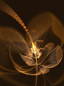 Advent Flower by stufferhelix