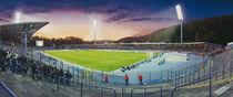 Aue - Erzgebirgsstadion von Steffen Grocholl