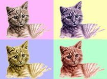 Kätzchen PopArt - Kitten PopArt von Nicole Zeug