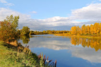 Autumn background by larisa-koshkina