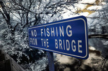 No Fishing From the Bridge von John Rizzuto