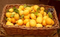 Basketful of Lemons. von Heather Goodwin