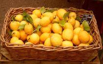 Lemon-basket