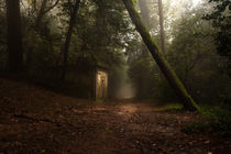 Hansel and Gretel by Jorge Maia