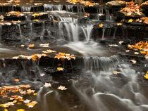 Buttermilk Falls von Shannon Workman