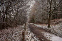The Cycle Path In Winter by David Tinsley