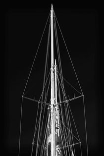 Mast Shapes by John Rizzuto