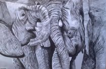 Elephants by Sonja Blügel