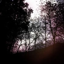 Nearly winter 01 by Mikel Cornejo Larrañaga