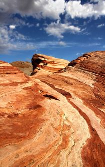 Wave im Valley of Fire von Bruno Schmidiger