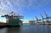Beladung eines Containerschiffs von caladoart