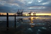 Sonnenuntergang in der gefrorenen Elbe by caladoart