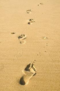 Einsame Fußspuren im Sand by caladoart