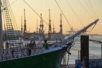 Segelschiff im Hamburger Hafen by caladoart