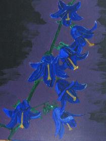 Glockenblumenblüten von Klaus Engels