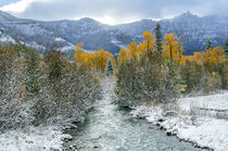 Autumn in the Uncompahgre Mountains by Barbara Magnuson & Larry Kimball