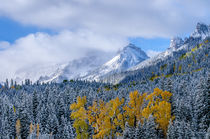 Fall in the Rockies von Barbara Magnuson & Larry Kimball