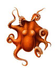 Oktopus Krake Orange Octopus Kraken Vintage Art by artfoxx