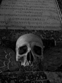 skull von Jürgen Creutzburg