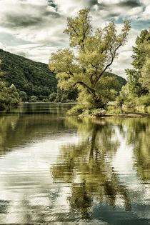 traumhafte Bauminsel - surreal von Erhard Hess