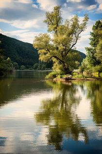 traumhafte Bauminsel - romantisch von Erhard Hess