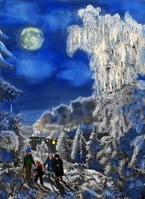 Winterunternehmungen von Heidi Schmitt-Lermann