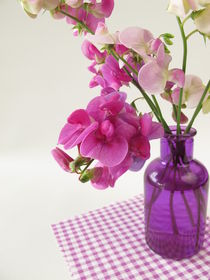 Ein Strauß Wicken in einer Vase von Heike Rau