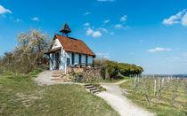Michaelskapelle in Bad Dürkheim by Erhard Hess