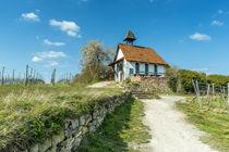 Michaelskapelle in Bad Dürkheim II by Erhard Hess