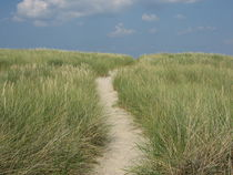 Weg zum Strand by Susanne Winkels