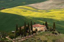 Frühling in der Toscana von Bruno Schmidiger