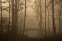 Brücke im Jenischpark von Angela Dieckmann