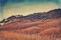 Amrum Dunes von AD DESIGN Photo + PhotoArt